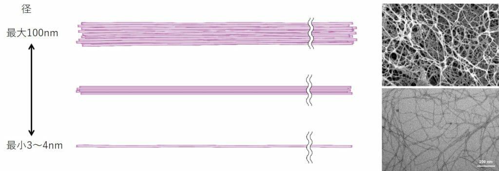 セルロースナノファイバーの種類別径のサイズ