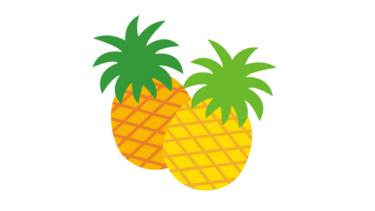 沖縄でパイナップル残渣からCNFを生産へ
