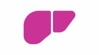 セルロースナノファイバーのハイドロゲルを使い、世界で初めて生体外で臓器を作製