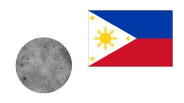 フィリピンでセルロースナノクリスタル(CNC)の製造が始まる